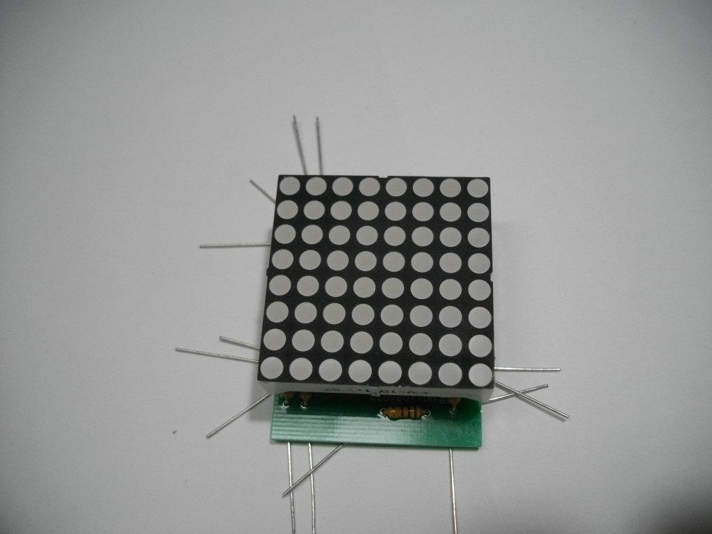 IMGP5323