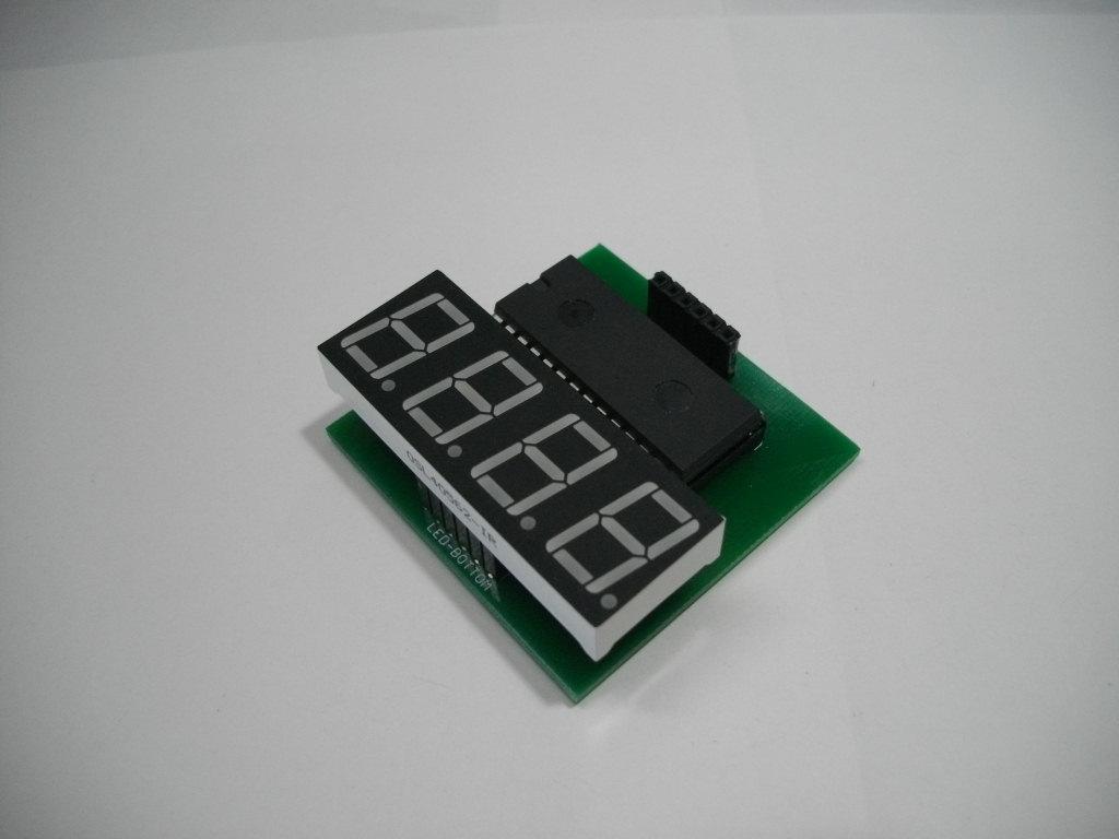 IMGP5475